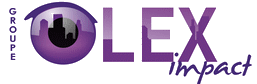Groupe Lex-Impact